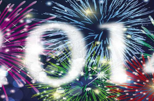 Article : Bonne année 2014